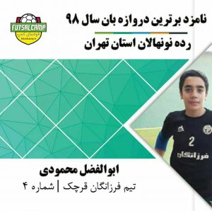 ابوالفضل محمودی